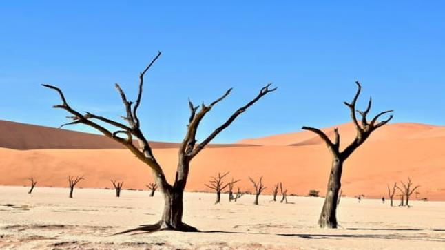 تفسير حلم الصحراء في المنام