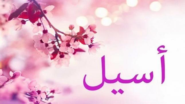 معنى اسم أسيل في القاموس العربي